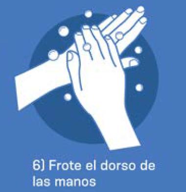 6 Frote el dorso de las manos