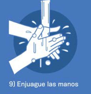 9 Enjuage las manos